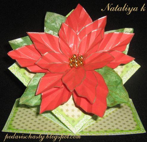 новогодне-рождественская открытка с пуансеттией