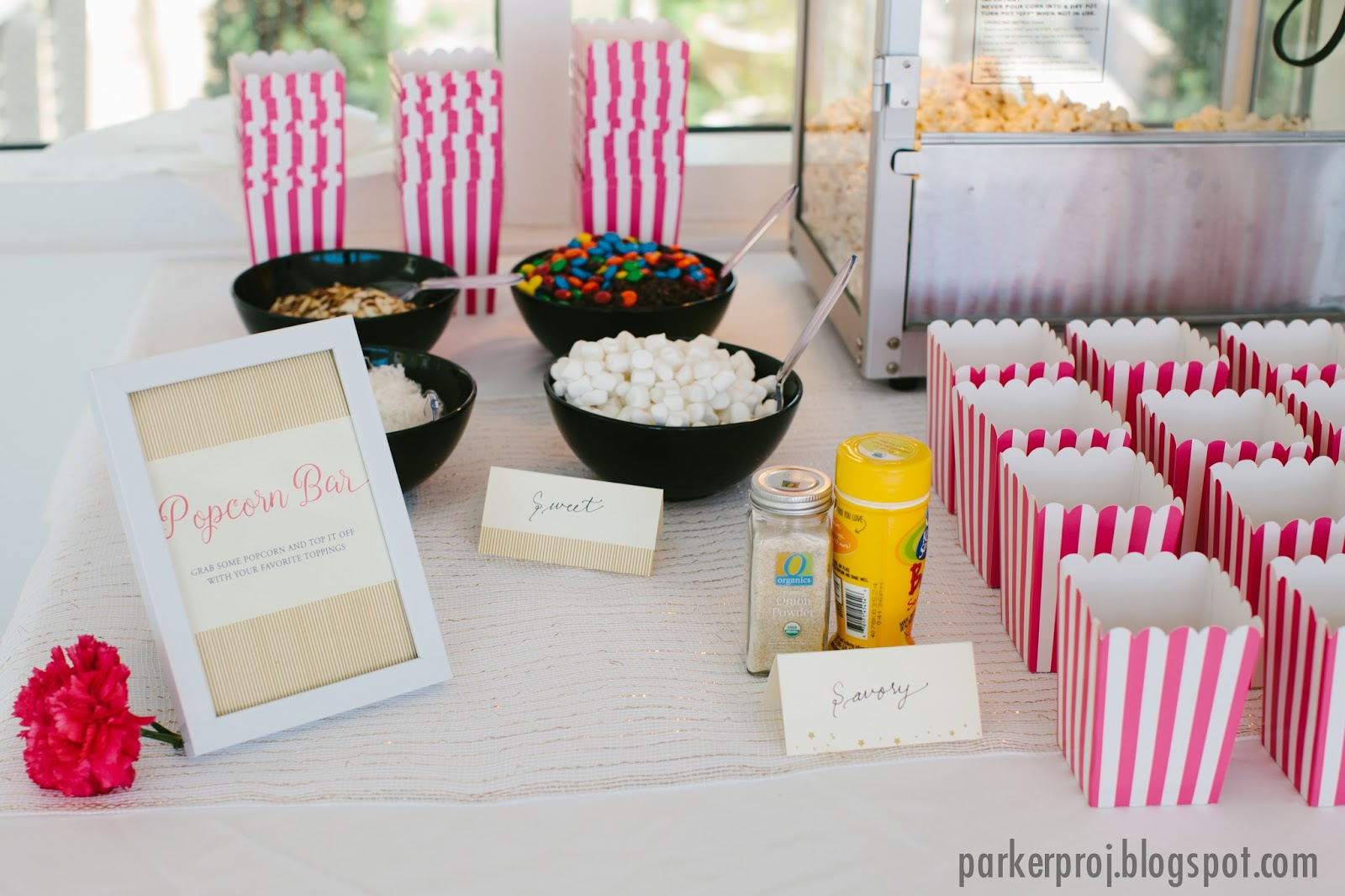The Parker Project Twinkle Twinkle Little Star Themed Baby Shower
