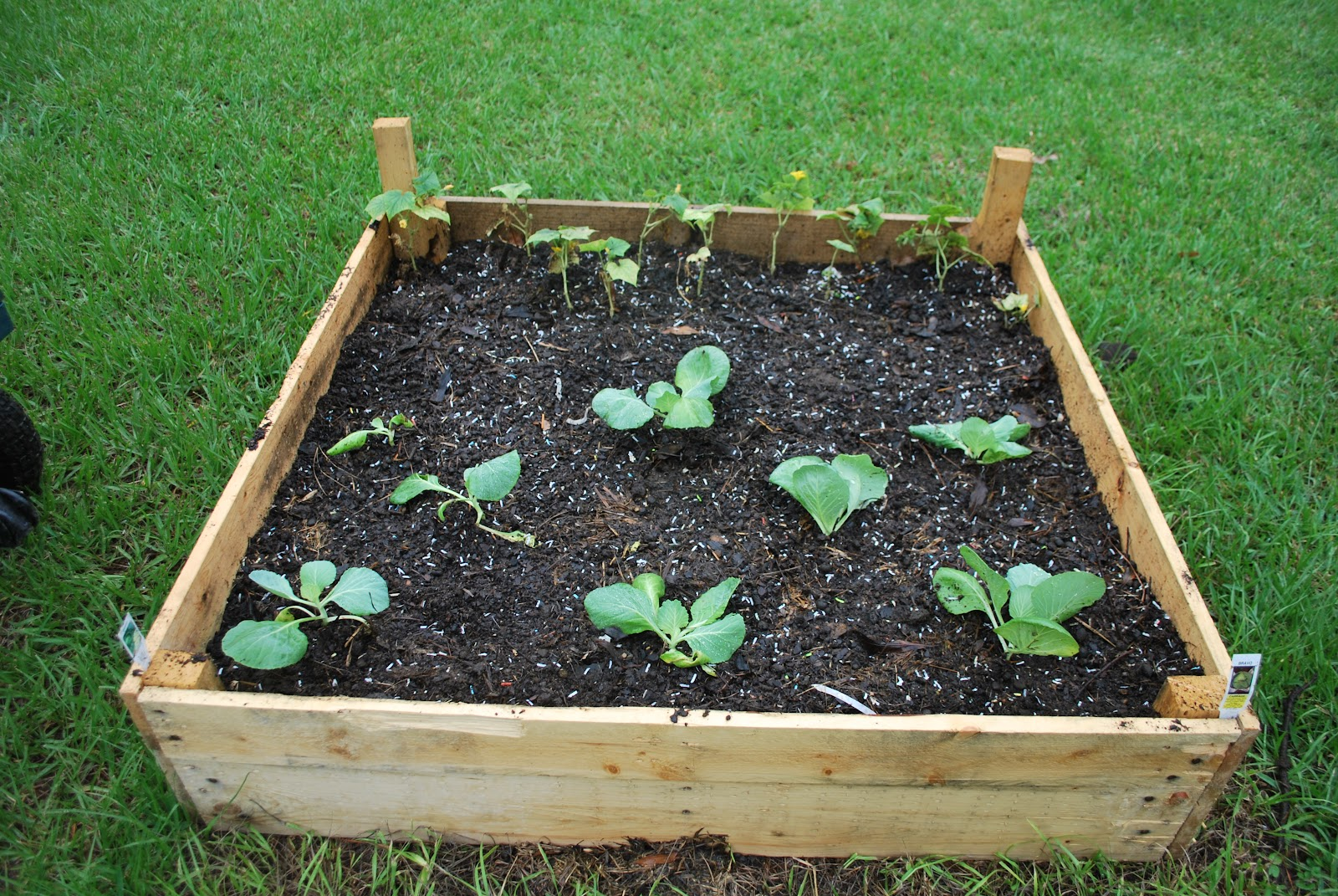 Hightail Farms Building Raised Garden Beds On The Cheap