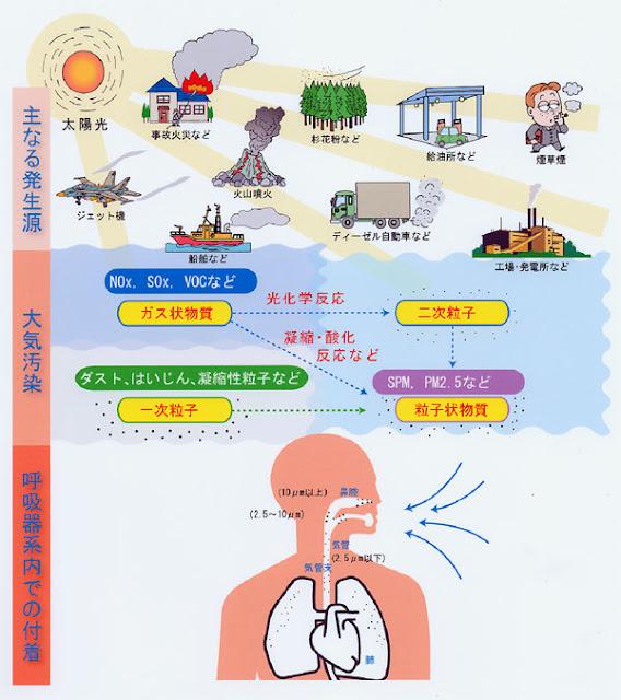 PM2.5の発生源や大気の状態。人体への影響