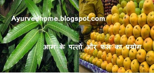 Use of Mango Leaves in Hindi,  आम के पत्तों और फल का प्रयोग