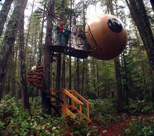 7 Amazing Houses Built Into Nature: Amazing Tree House Wallpapers