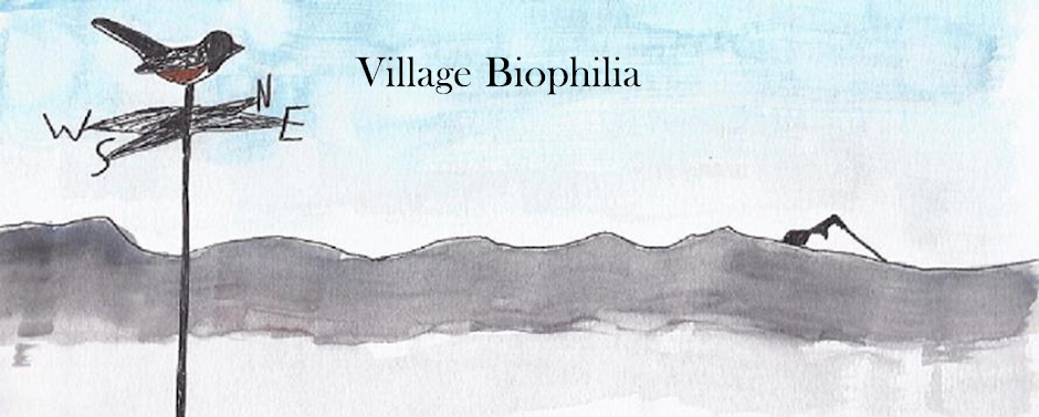 Village Biophilia                  