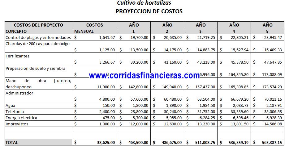 Costos de producción proyecto de cultivo de hortalizas