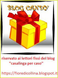 Nuovo Blog Candy 100 Followers by Fiore