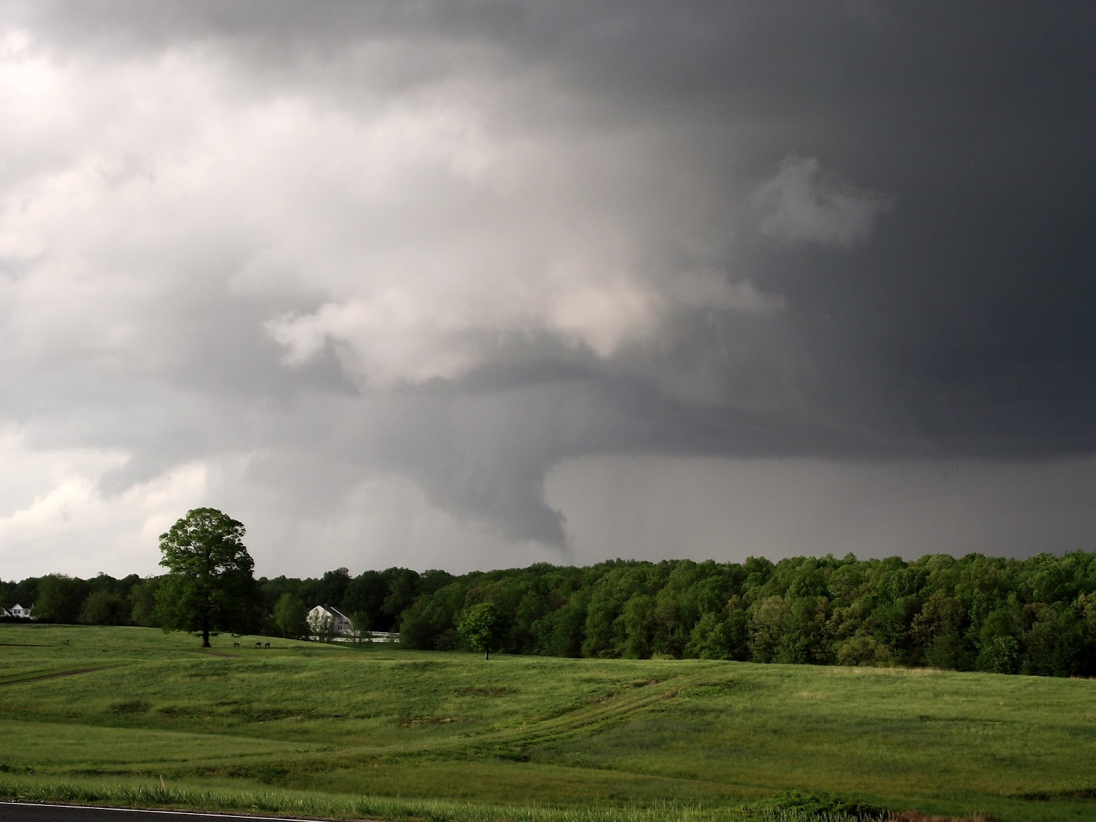 tornado single women Tornado sirens go off during piano recital - duration: 2:22 ajmadeux 1,224,274 views 2:22 angry monkey sounds - duration: 1:43 audio productions.