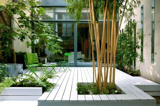 Active idee balcons terrasses - Quel arbre pour petit jardin ...