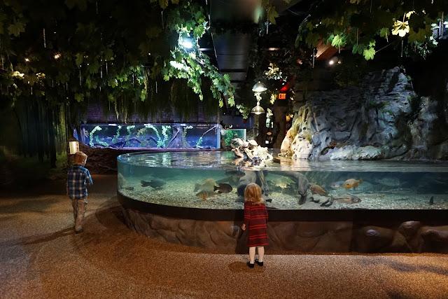 Running through the Aquarium