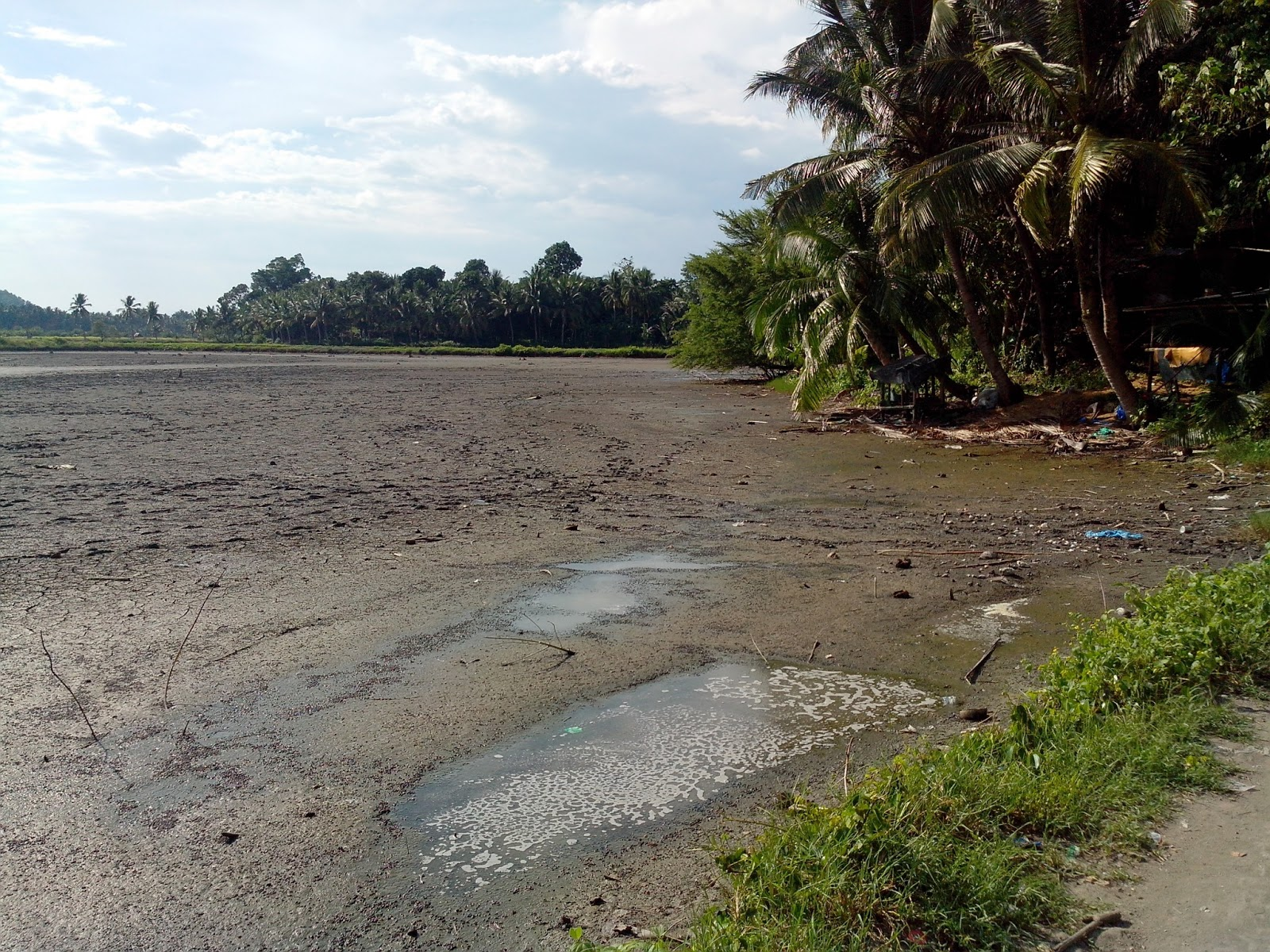 Dati ito ay mangrove, ngayon ay fishpond na(location: Sitio
