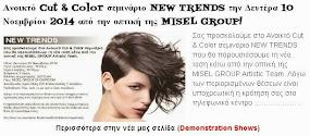 Ανοικτό Cut & Color σεμινάριο NEW TRENDS την Δευτέρα 10 Νοεμβρίου 2014 από την οπτική της MISEL GRO