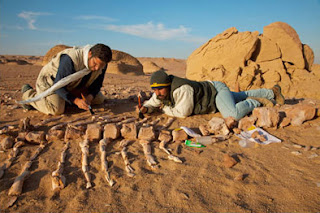 Prospek Kerja Jurusan Arkeologi