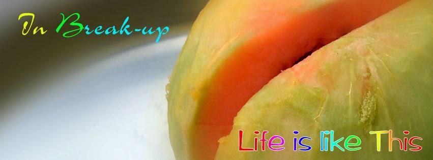 Facebook Cover or musk melon Crack