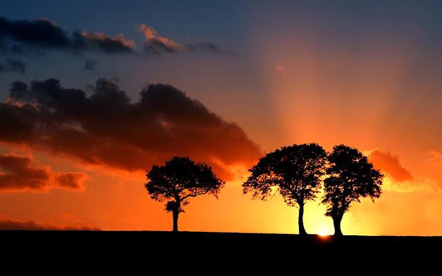 suffolk-savanna-sunset