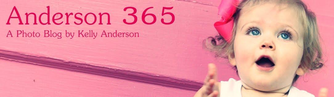 Anderson 365
