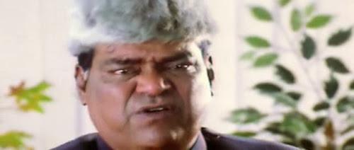 Watch Online Hollywood Movie Mawali Ek Play Boy (2005) In Hindi Telugu On Putlocker