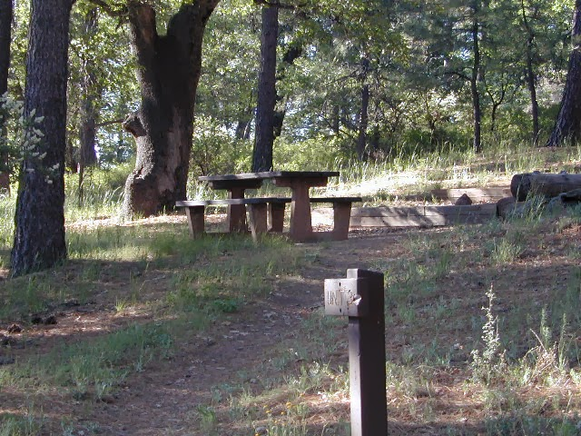 agua dulce meadow camp, laguna mountains