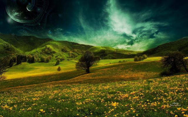 Mountain Flower Landscape