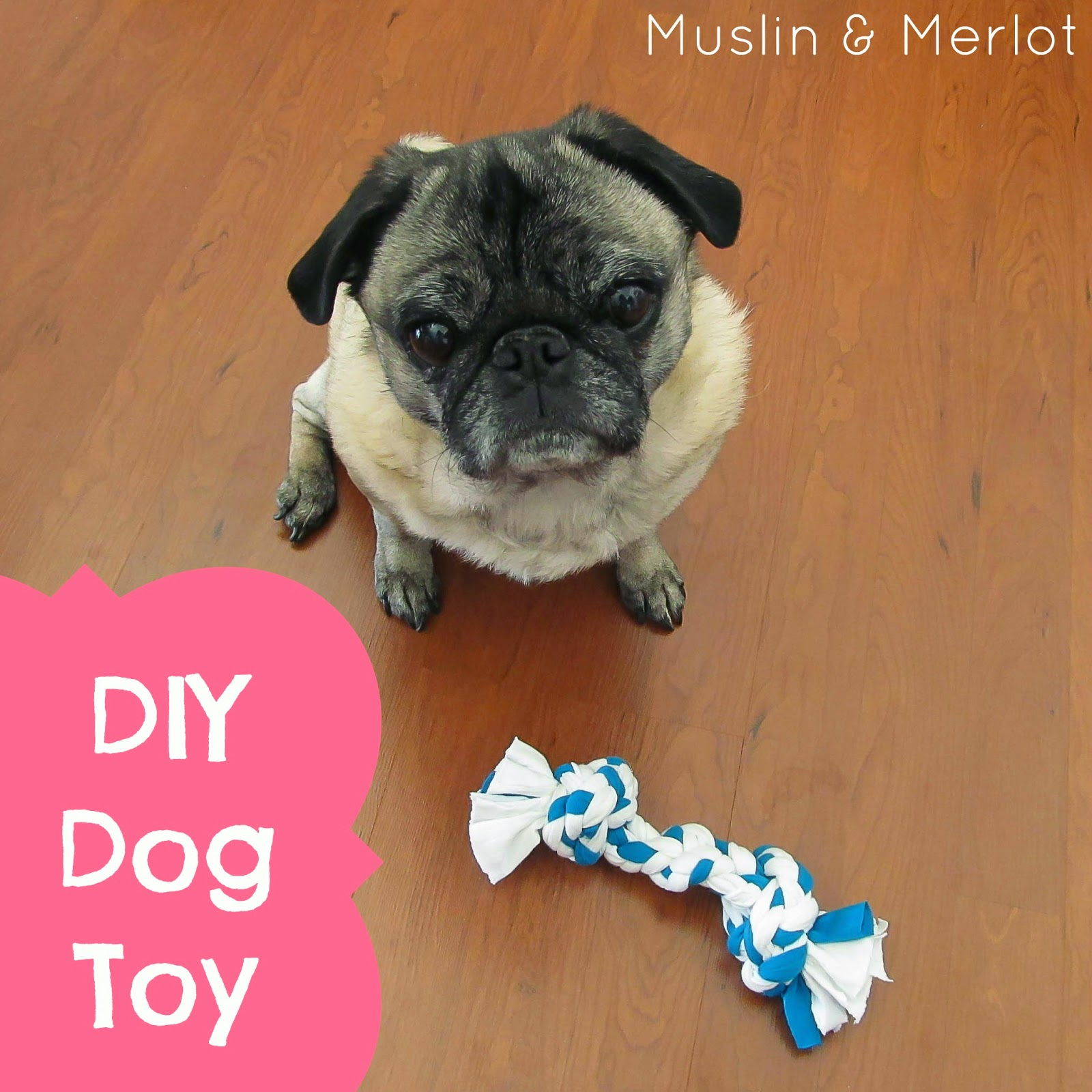 How To Make A Dog Toy From T Shirts