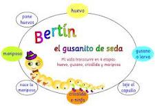 BERTÍN EL GUSANITO DE SEDA