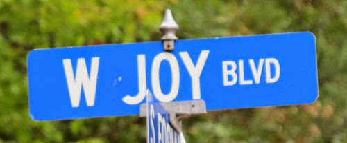 Joy Boulevard