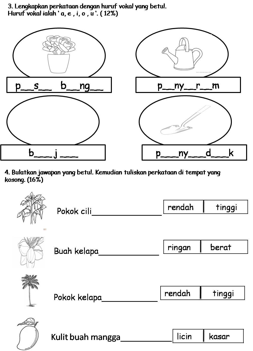 School Papers School Papers