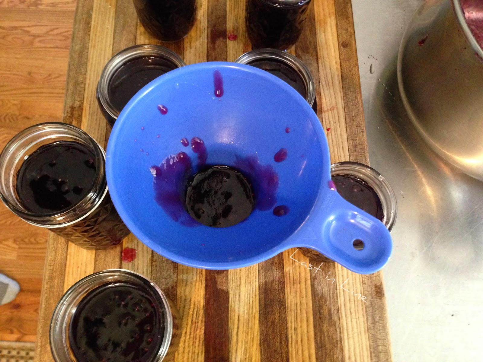 Last in Line: Grape Jelly