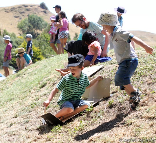 L-R: Lochie Aspinall, 6, Connor Aspinall, 4, Napier, at Another Day in Taradise, a concert day at Moana Park Winery, Puketapu, Napier. photograph