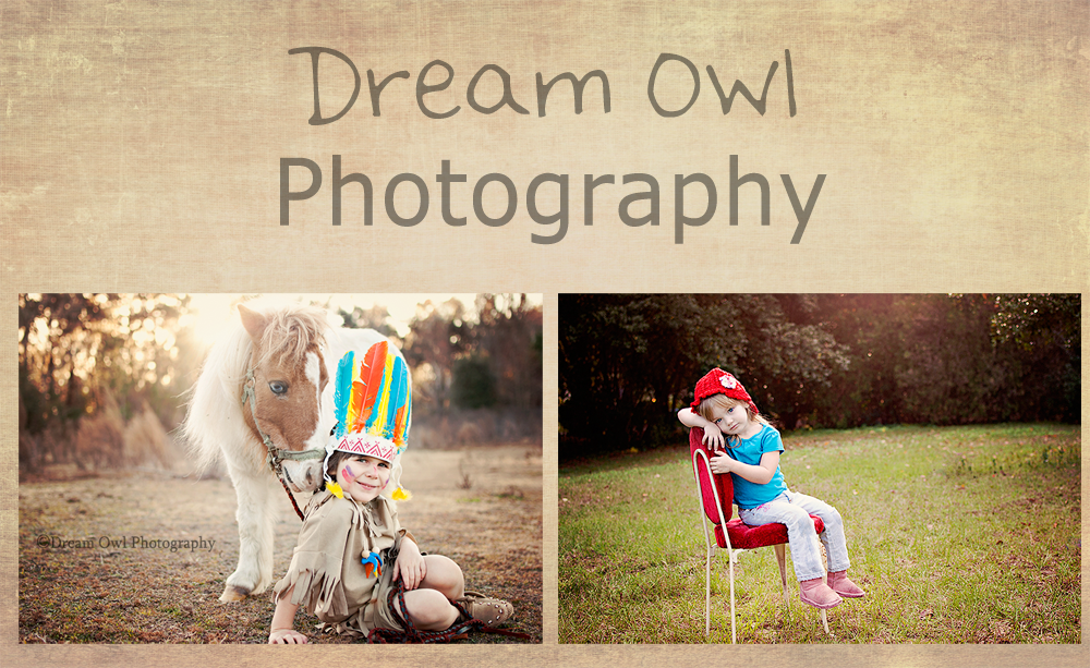 Dream Owl Photography