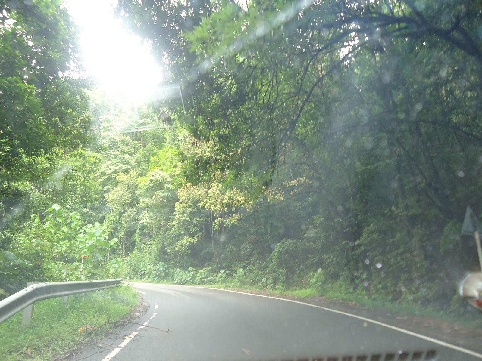Bangalore To Coorg Best Route By Car