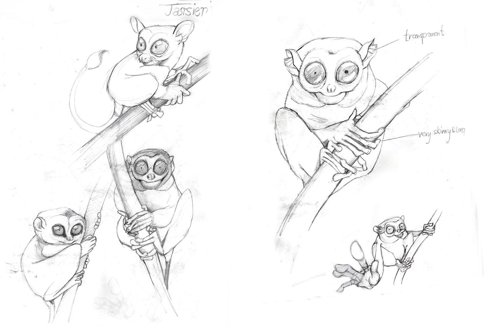 Philippine tarsier drawing