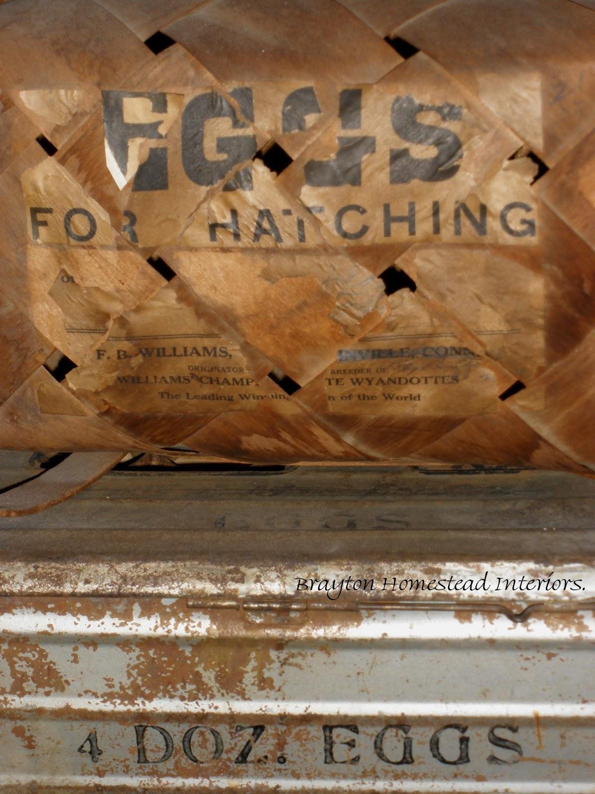 http://4.bp.blogspot.com/-hlxm_-eqxh4/URI5Nyn3l7I/AAAAAAAAHOA/QEpPpYvs7U4/s1600/egg+basket+brayton+2.jpg