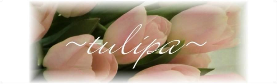 ~tulipa~