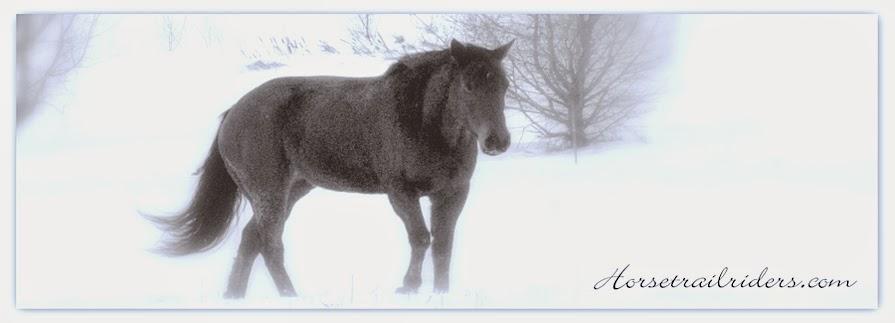 Horsetrailriders.com