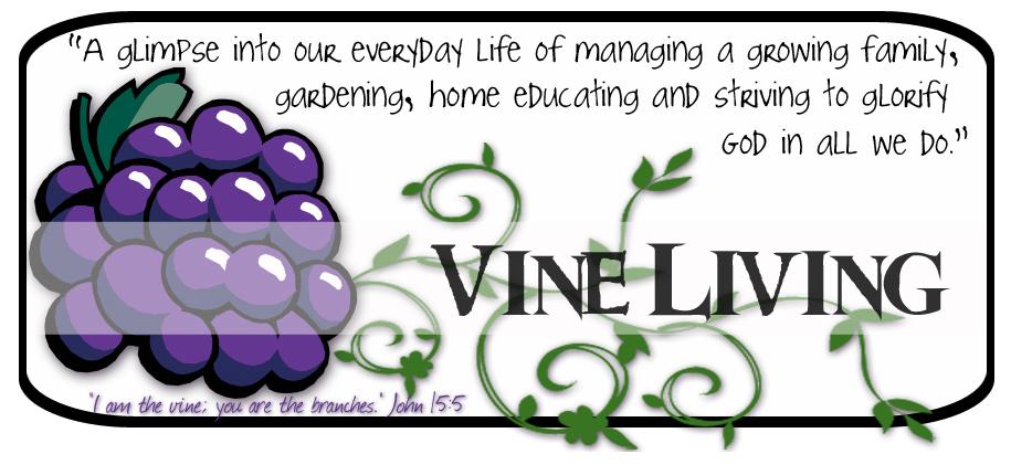 Vine Living