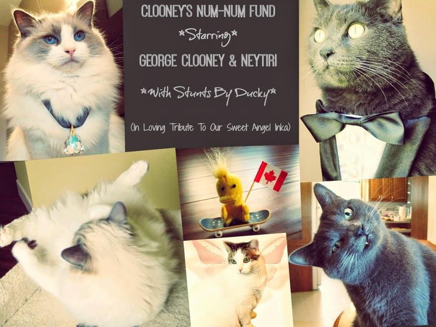 Clooney's Num-Num Fund