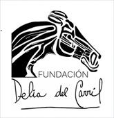 Fundación Delia del Carril