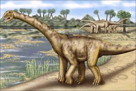 agysaurus+superbus 10 Dinosaurus Dengan Ukuran Paling Besar