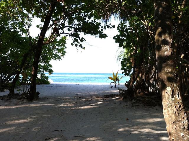 maldive_vista_villa_mare