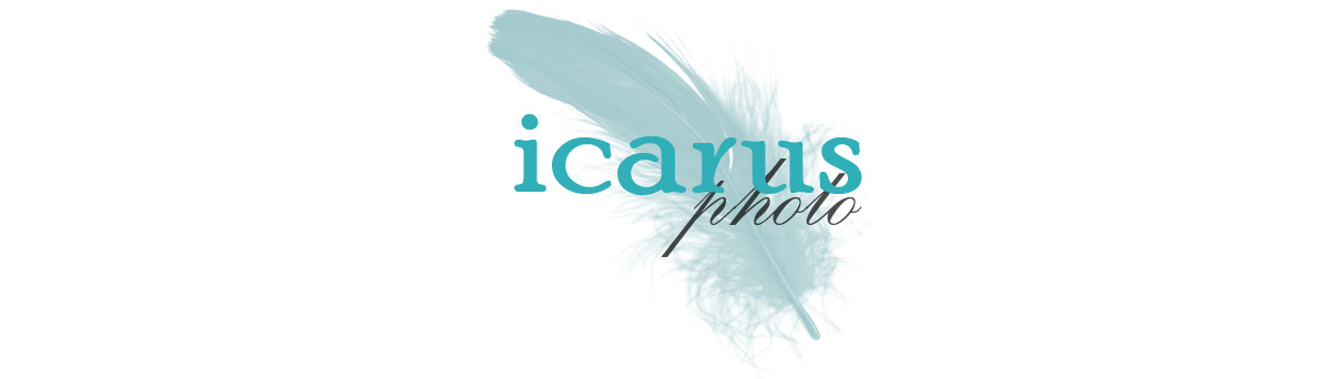 Icarus Photography - Bloomington Indiana Wedding and Lifestyle Photographer