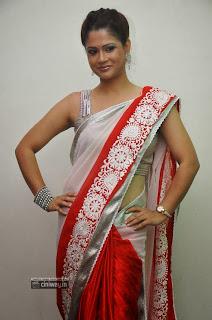 Anchor-Shilpa-Chakravarthy-in-Saree-at-Palnadu-Audio-Launch