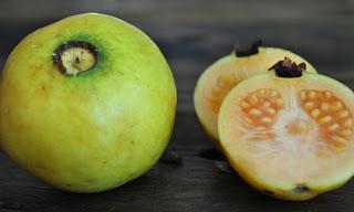 فائدة الجوافة