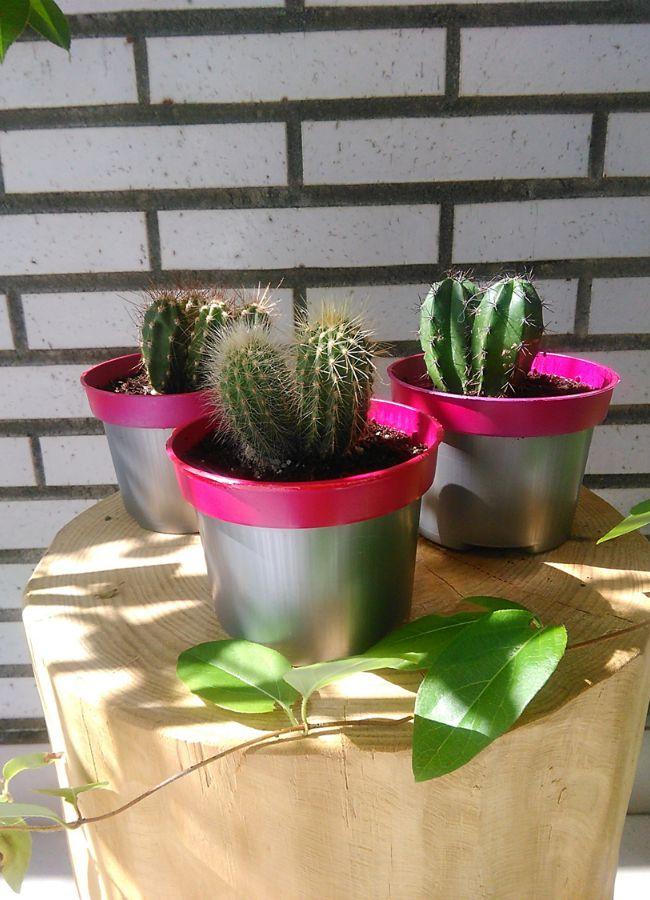 Decoración Fácil: DIY: Maceta neón para cactus