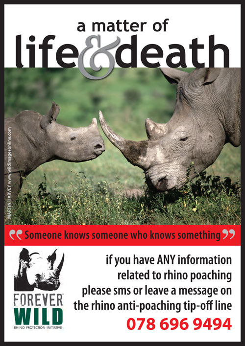 how to help save the rhino in south africa