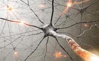 Hyperactive Pain Nerve