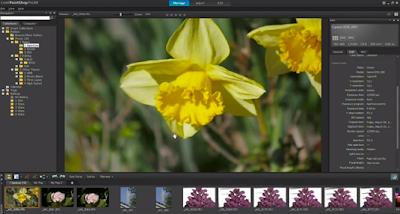 Top 10 Alternative of Adobe Photoshop