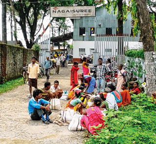 Workers in Nagaisuree garden where two persons died. Telegraph picture