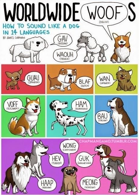 Como suenan los perros en 14 lenguajes