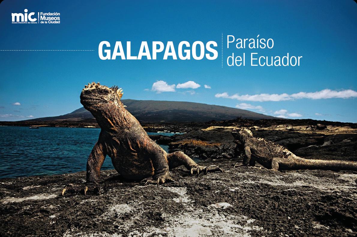 Galapagos Ecuador  city images : propósito del 10 de marzo, descubrimiento de las islas Galápagos