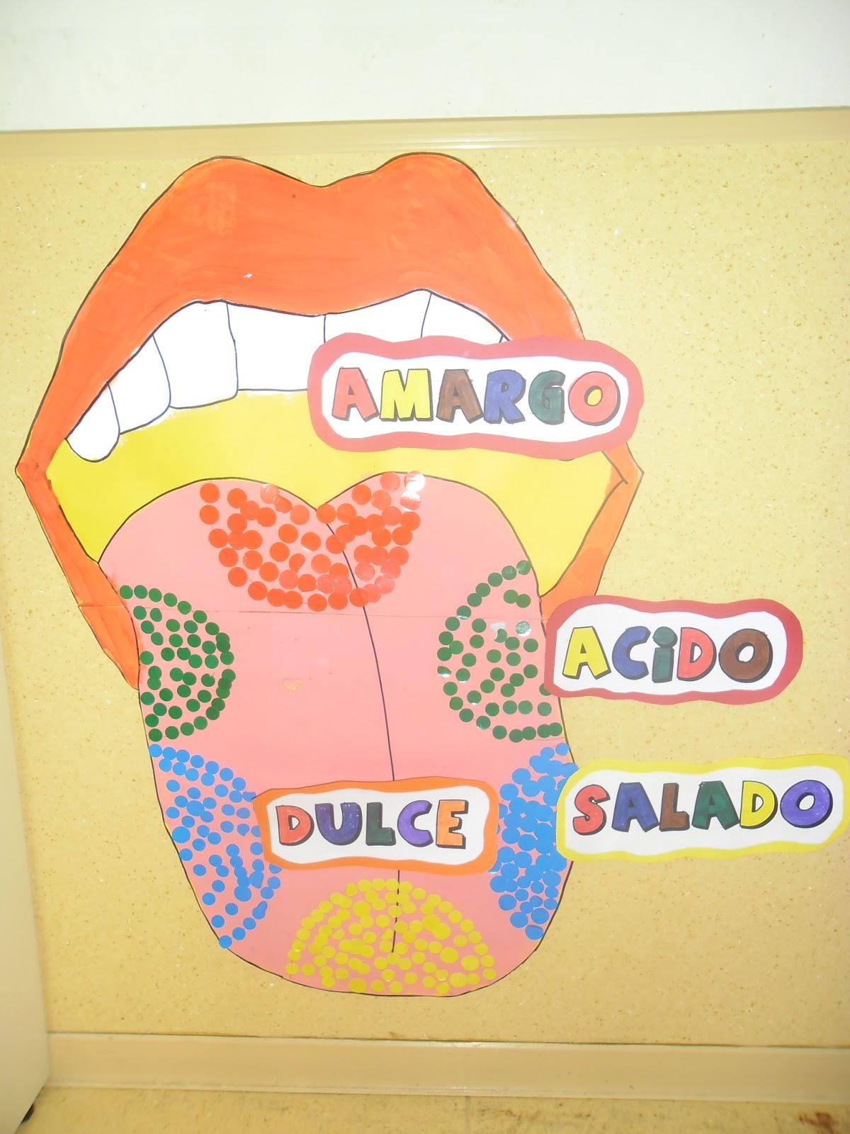 Recursos de educaci n infantil enero 2013 for Mural de los 5 sentidos