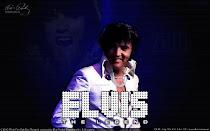 Tudo Sobre Elvis Presley